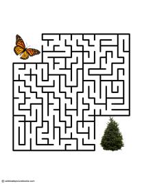 CPB - Monarch Maze