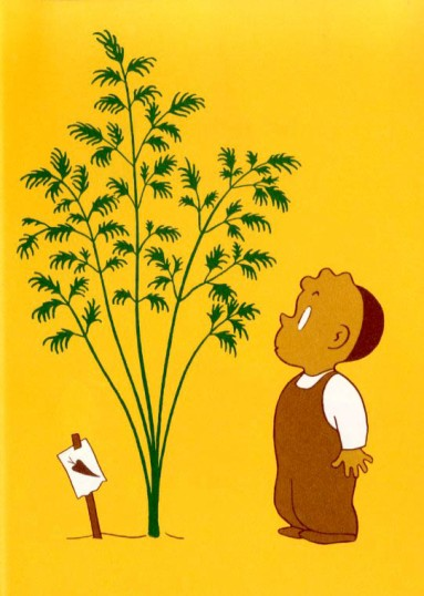 celebrate-picture-books-picture-book-review-the-carrot-seed-sprouting