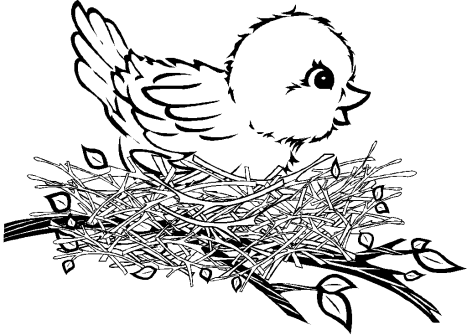 celebrate-picture-books-picture-book-bird-in-nest-coloring-page
