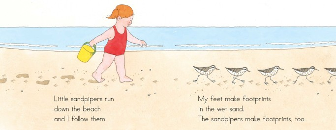 celebrate-picture-books-picture-book-review-at-the-beach-interior-art-sandpipers