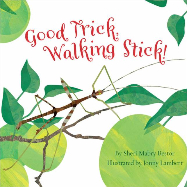 celebrate-picture-books-picture-book-review-good-trick-walking-stick-cover
