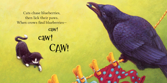 celebrate-picture-books-picture-book-review-more-blueberries-crow-and-cat