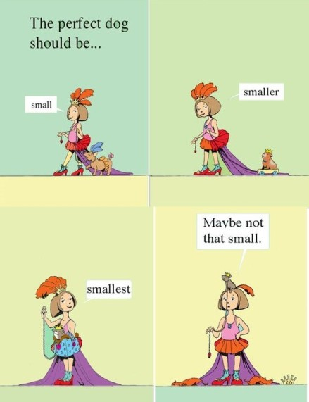 celebrate-picture-books-picture-book-review-the-perfect-dog-smaller