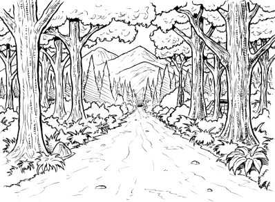 celebrate-picture-books-picture-book-review-forest-coloring-page