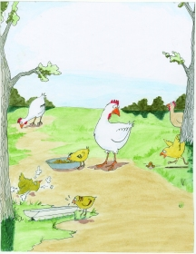 celebrate-picture-books-picture-book-review-what's-up-with-this-chicken-baby-chicks