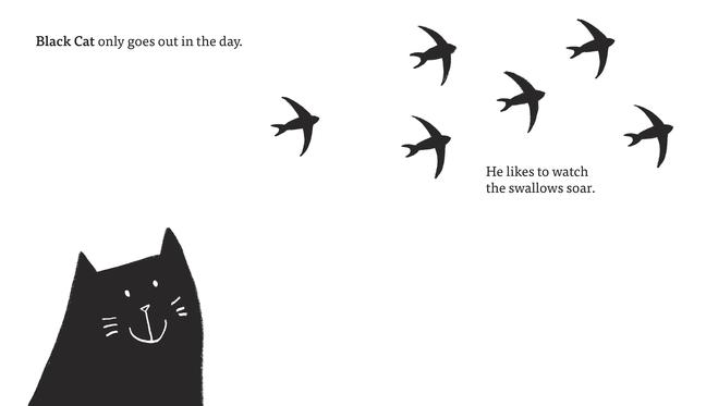celebrate-picture-books-picture-book-review-black-cat-white-cat-dayt
