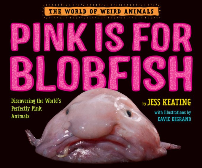 celebrate-picture-books-picture-book-review-pink-is-for-blobfish-cover