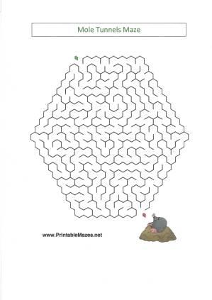 celebrate-picture-books-picture-book-review-mole-maze