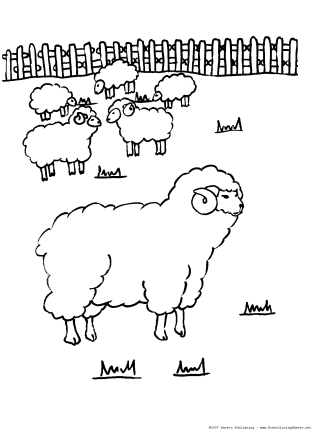 celebrate-picture-books-picture-book-review-sheep-coloring-page