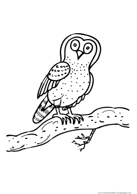 celebrate-picture-books-picture-book-review-owl-coloring-page
