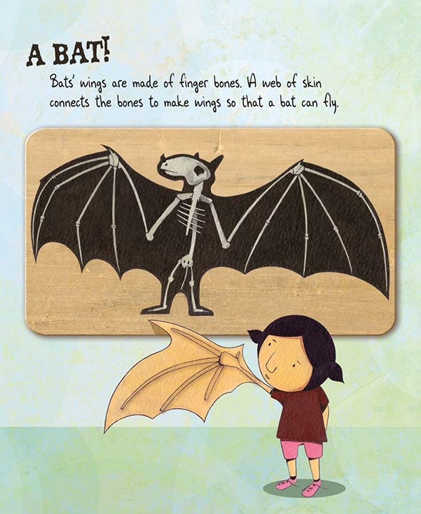 celebrate-picture-books-picture-book-review-bone-by-bone-bat