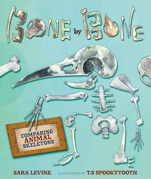 celebrate-picture-books-picture-book-review-bone-by-bone-cover