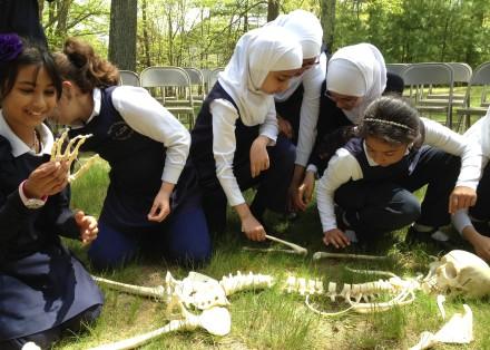 celebrate-picture-books-picture-book-review-bone-by-bone-students-at-al-hamra-school