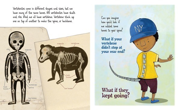 celebrate-picture-books-picture-book-review-bone-by-bone-tailbone
