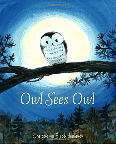 celebrate-picture-books-picture-book-review-owl-sees-owl-cover