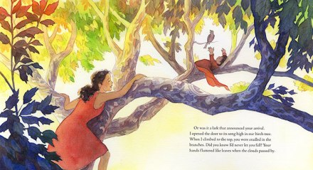 celebrate-picture-books-picture-book-review-the-story-I'll-tell-birch-tree