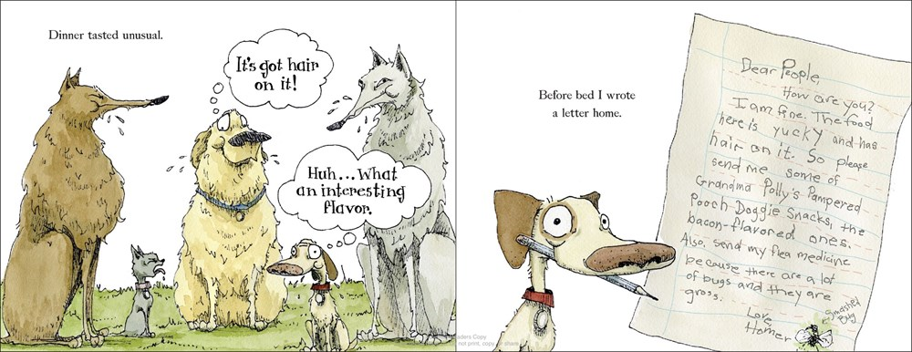 celebrate-picture-books-picture-book-review-wolf-camp-running-letter-home