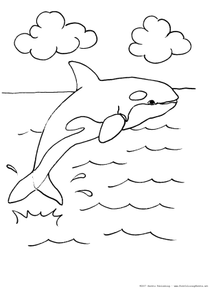 Leopard Seal Coloring Page | Leopard seal, Mammals, Coloring pages | 421x306