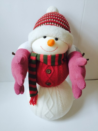 celebrate-picture-books-picture-book-review-sock-and-mitten-neck-warmer-and-pillow