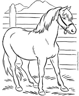 celebrate-picture-books-picture-book-review-horse-coloring-page