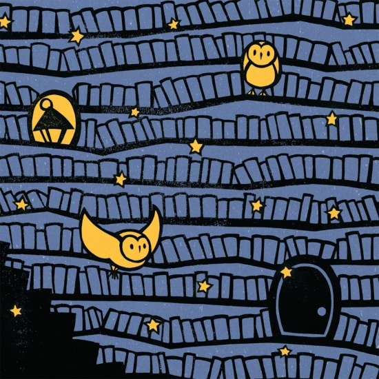 celebrate-picture-books-picture-book-review-the-midnight-library-at-night