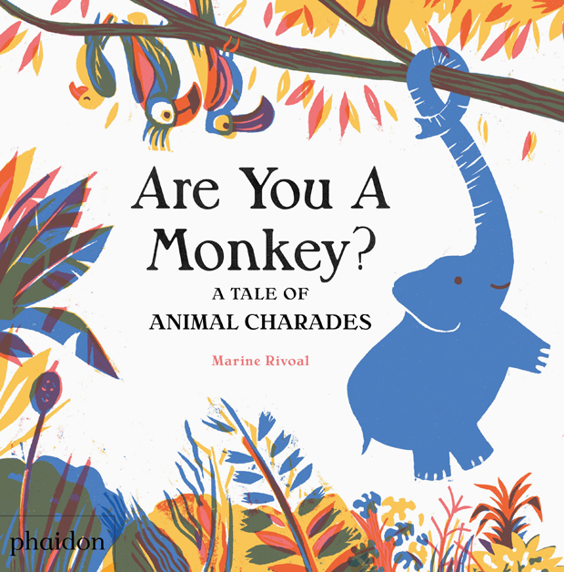 celebrate-picture-books-picture-book-review-are-you-a-monkey-cover