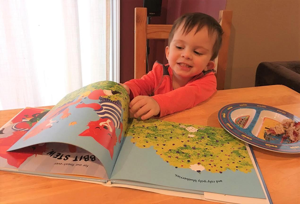 celebrate-picture-books-picture-book-review-rabbit-stew-fan