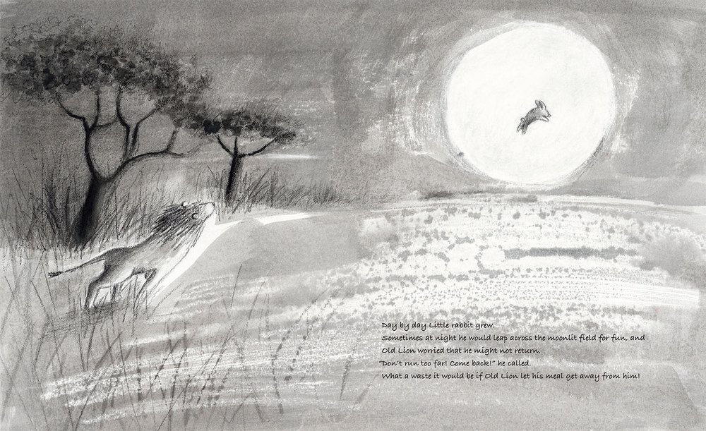 celebrate-picture-books-picture-book-review-old-lion-and-little-rabbit-hopping-in-moonlight