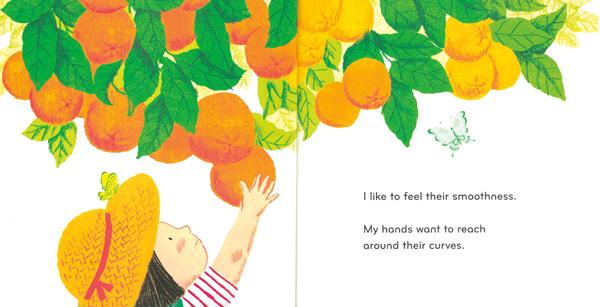 celebrate-picture-books-picture-book-review-round-orange-tree