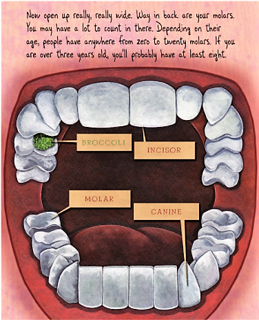 celebrate-picture-books-picture-book-review-tooth-by-tooth-human-mouth