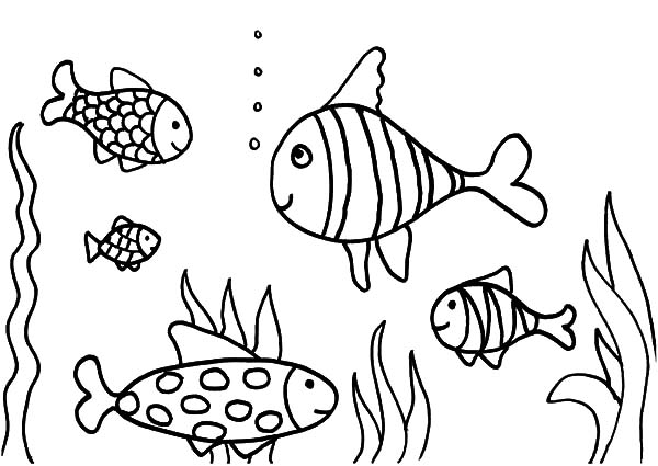 printable coloring pages aquarium coloring page june 19 it s national zoo and aquarium month - Aquarium Coloring Pages Printable