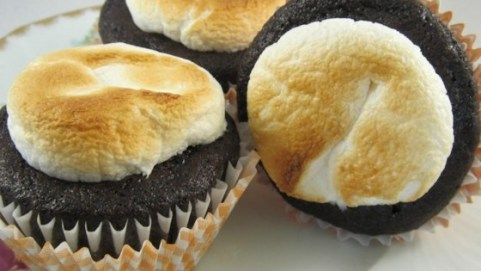 celebrate-picture-books-all-recipes-toasted-marshmallows-cupcakes