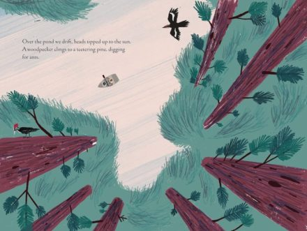 celebrate-picture-books-picture-book-review-over-and-under-the-pond-woodpecker