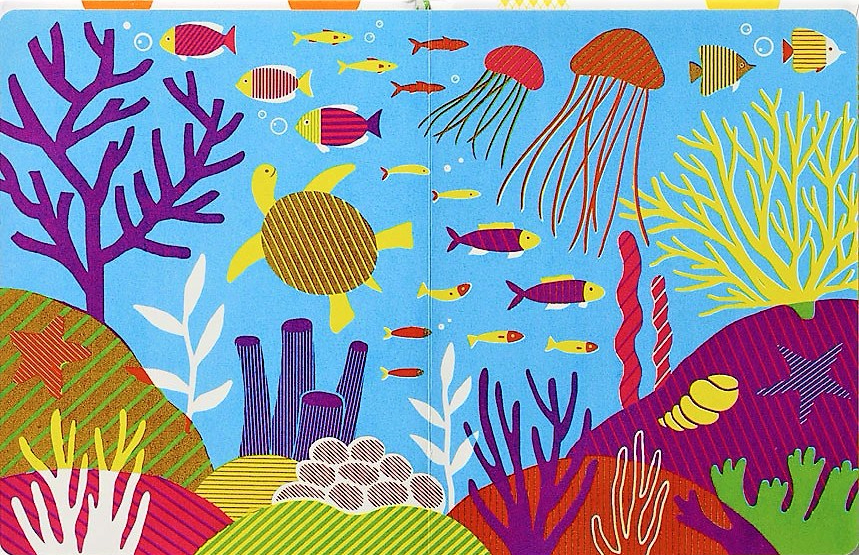 celebrate-picture-books-picture-book-review-my-first-book-of-patterns-ocean