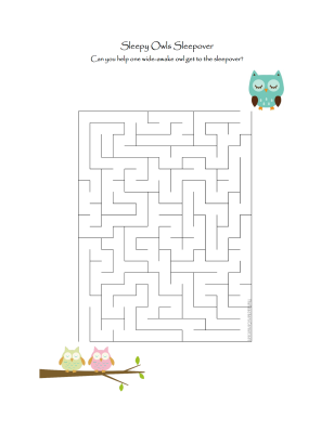 celebrate-picture-books-picture-book-review-sleepy-owls-maze