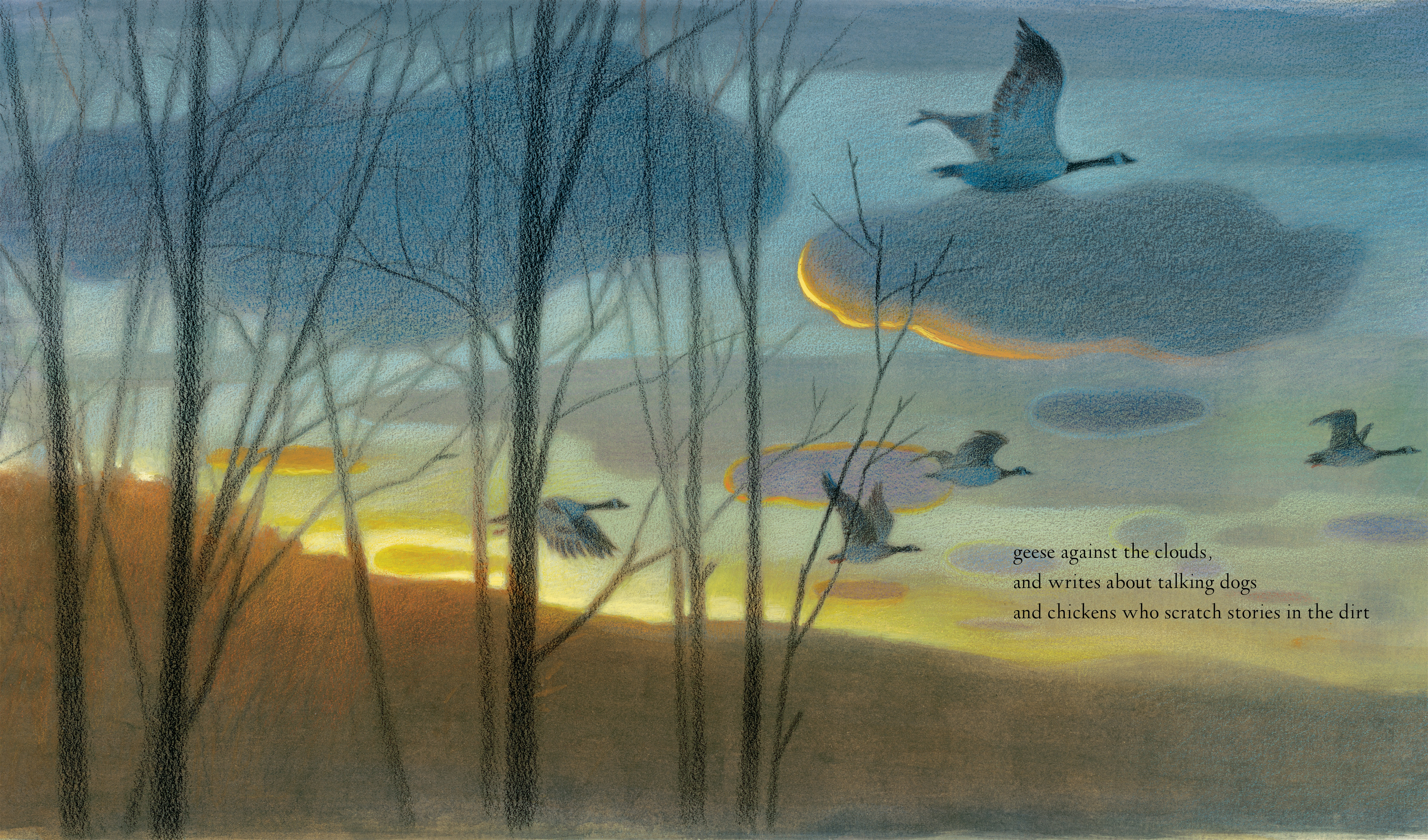 celebrate-picture-books-picture-book-review-someone-like-me-geese