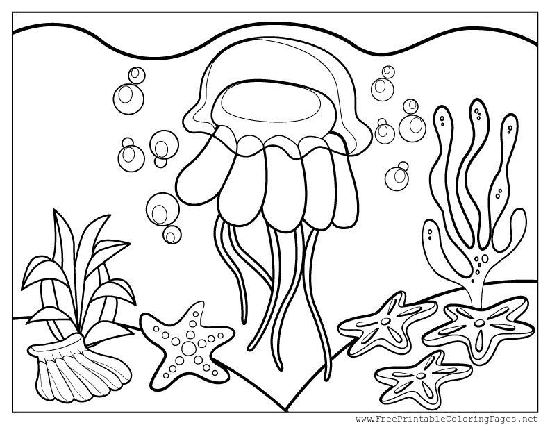 celebrate-picture-books-picture-book-review--jellyfish-coloring-page