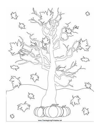 celebrate-picture-books-picture-book-review-Thanksgiving-leaves-falling-coloring-page