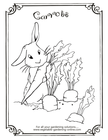 celebrate-picture-books-picture-book-review-carrots-seeds-coloring-page