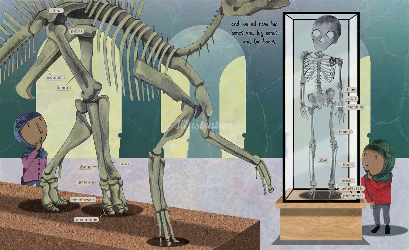 celebrate-picture-books-picture-book-review-fossil-by-fossil-skeletons
