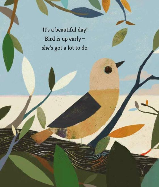 celebrate-picture-books-picture-book-review-bird-builds-a-nest-bird-in-nest