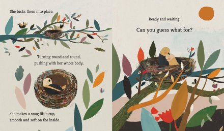 celebrate-picture-books-picture-book-review-bird-builds-a-nest-making-it-soft