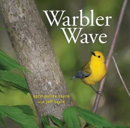 celebrate-picture-books-picture-book-review-warbler-wave-cover