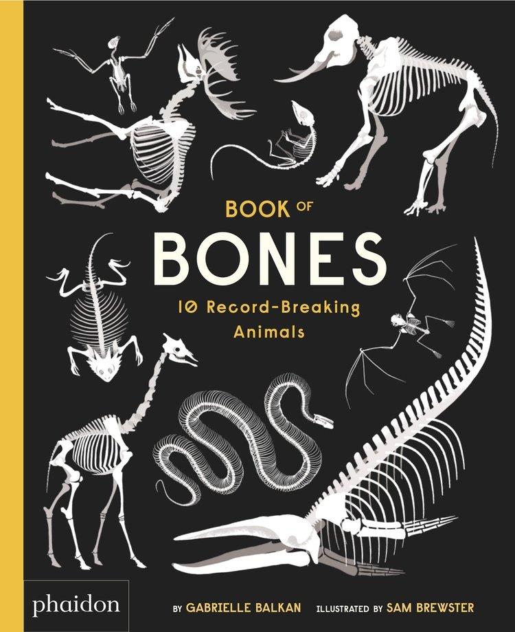 celebrate-picture-books-picture-book-review-book-of-bones-cover