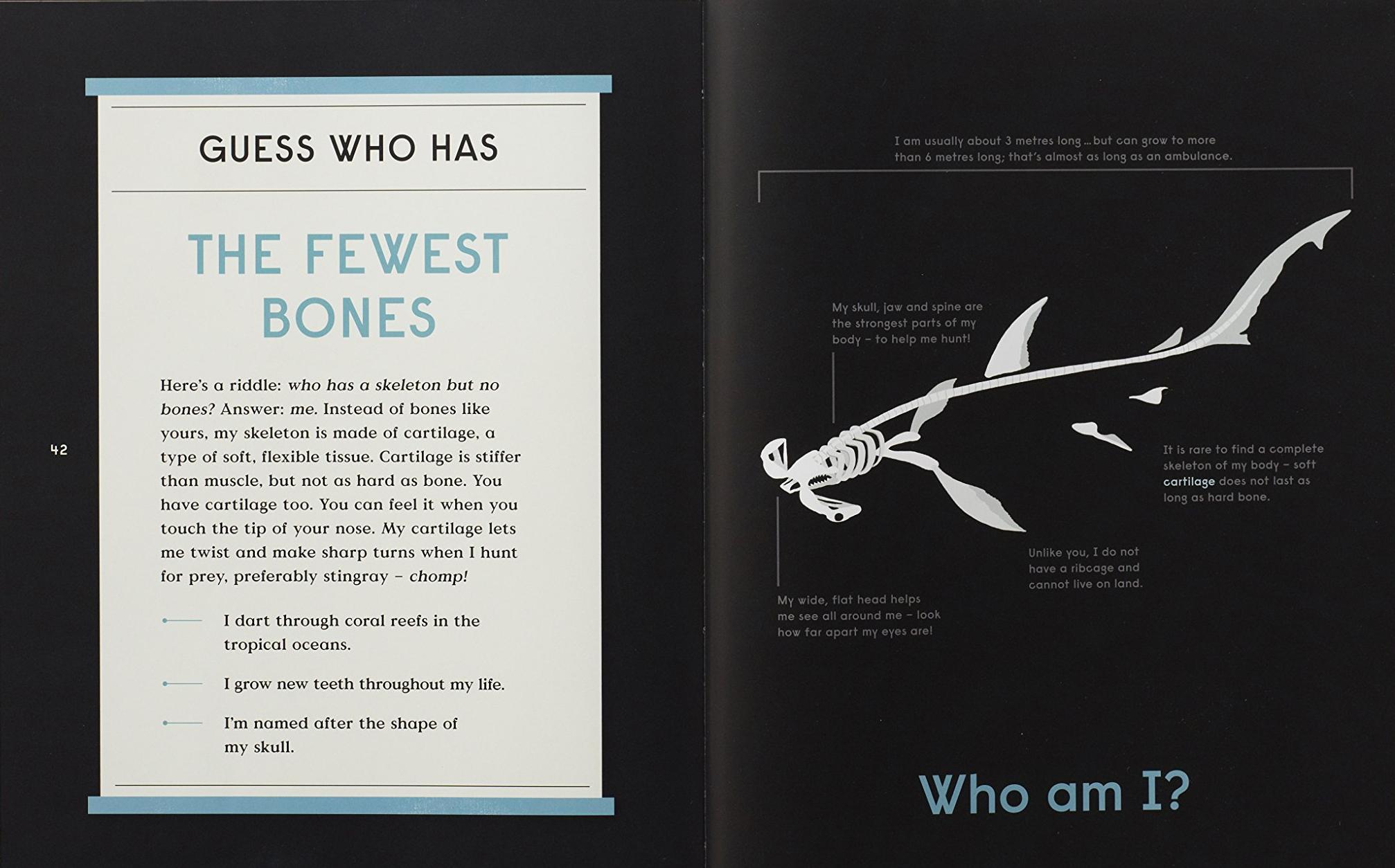 celebrate-picture-books-picture-book-review-book-of-bones-fewest-bon