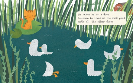 celebrate-picture-books-picture-book-review-quackers-liz-wong-at-the-pond