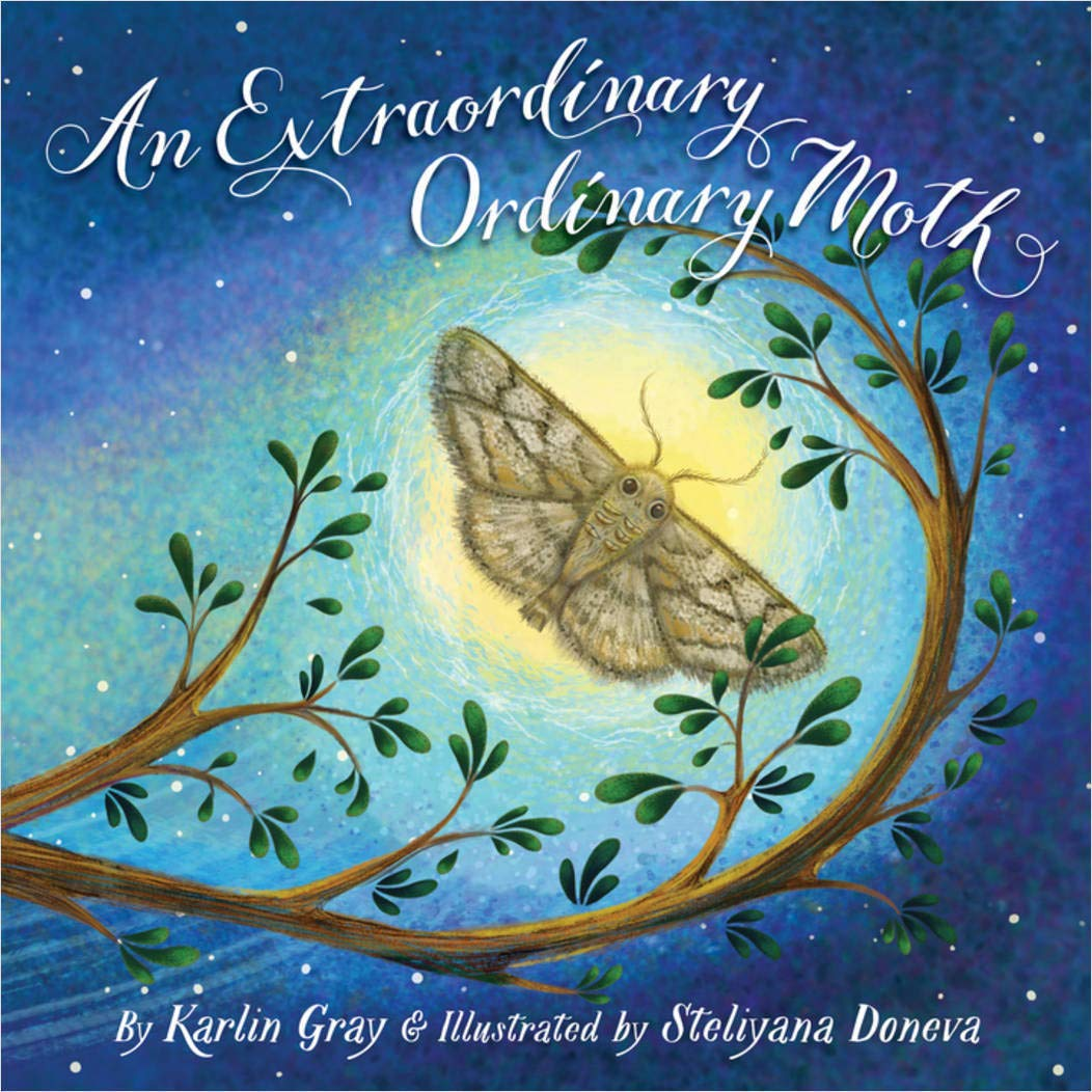 celebrate-picture-books-picture-book-review-an-extraordinary-ordinary-moth-cover