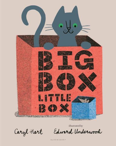 celebrate-picture-books-big-box-little-box-cover