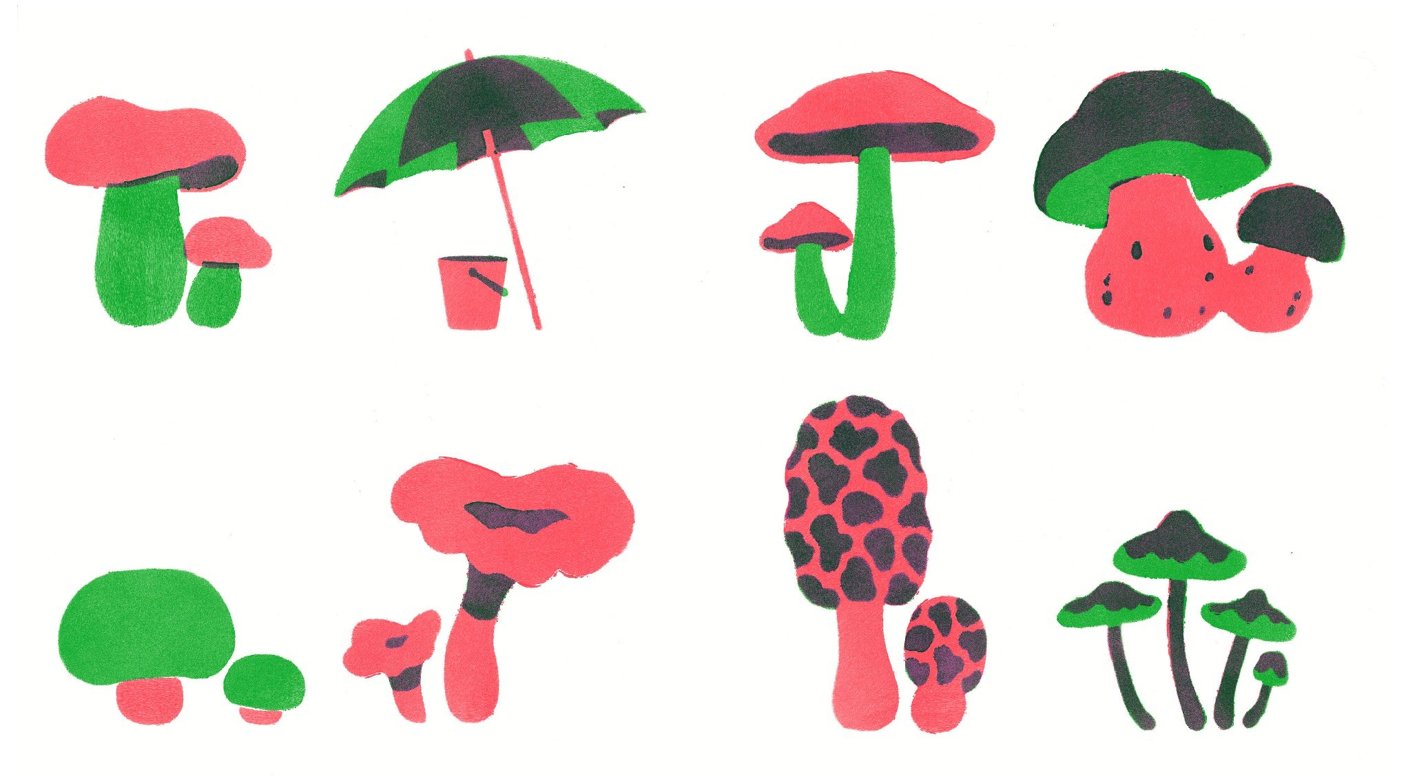 celebrate-picture-books-picture-book-review-food-hide-and-sneak-mushrooms
