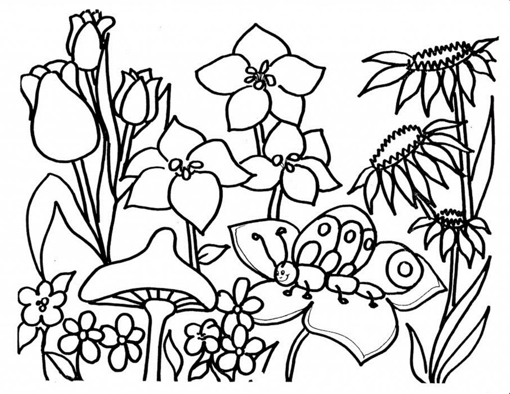celebrate-picture-books-picture-book-review-nature-coloring-page